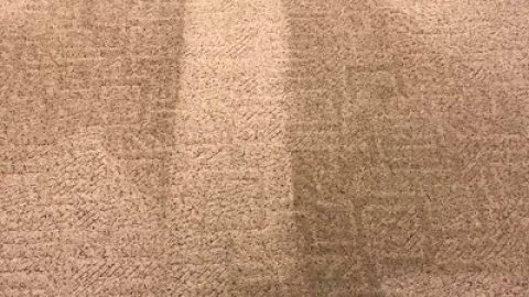 Bama's Best Carpet Cleaning